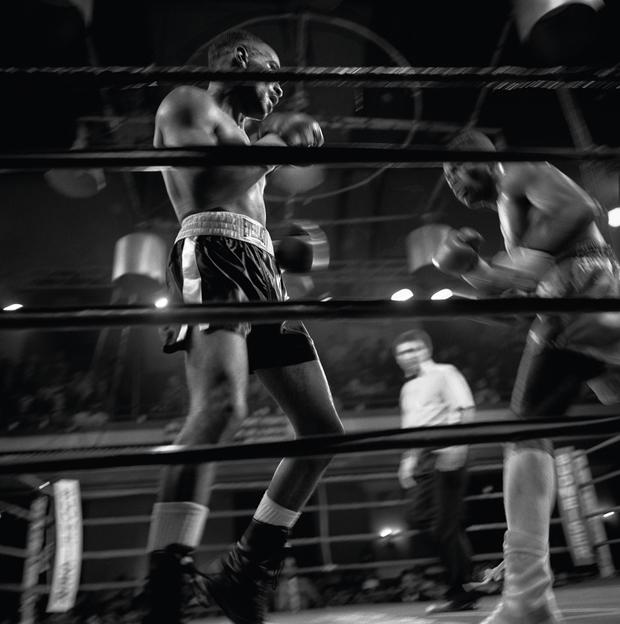 לארי-פינק-boxing