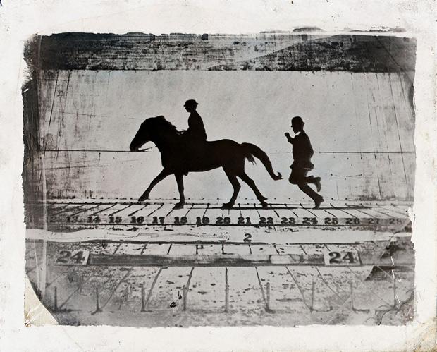 לילנד-סטנפורד-ופוני. מתוך מאמר על מייברידג' בבלוג צילום צילום בעם