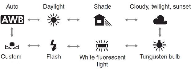 מקורות-האור-השונים-ב---wb