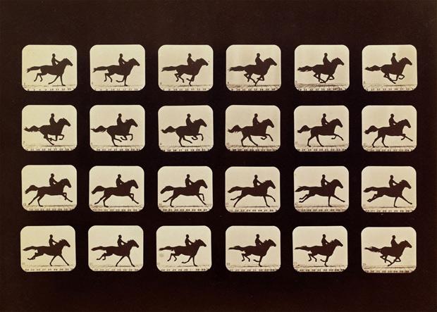 סוס-בתנועה,-1879
