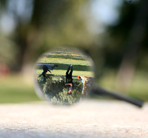 קורס צילום בבאר שבע | סדנת צילום בבאר שבע