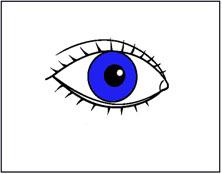 איור של עין