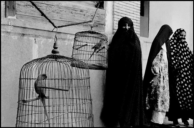 IRAN.-Shiraz.-1956