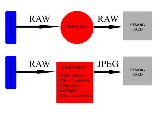 RAW-VS-JPEG-קורס-צילום-מתקדם